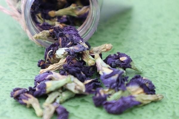 Bạn có thể mua trà đậu biếc tại Trà Biếu – địa chỉ bán trà khô uy tín