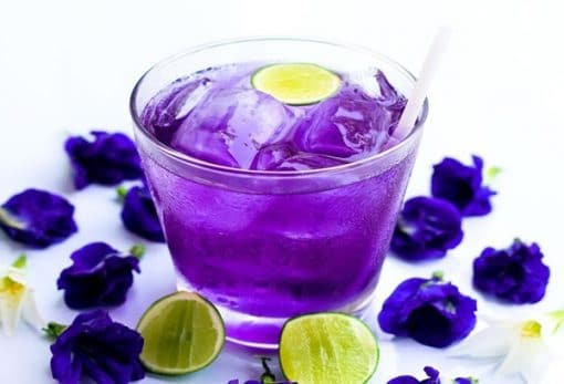Hoa và trà làm từ hoa đậu biếc giúp ngăn ngừa lão hóa sớm hiệu quả