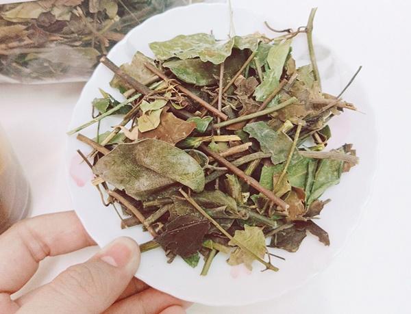 Liên hệ Trà Biếu ngay khi có nhu cầu mua trà thảo dược chất lượng cao