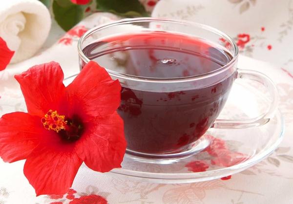 Liên hệ với Trà Biếu để được giải đáp thắc mắc về trà Hibiscus