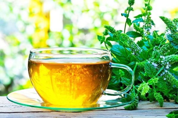 Trà Biếu là địa chỉ bán trà thảo dược uy tín