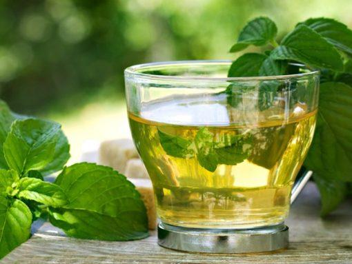 Trà bạc hà là loại trà thảo dược có lịch sử lâu đời và nhiều công dụng tuyệt vời cho sức khỏe