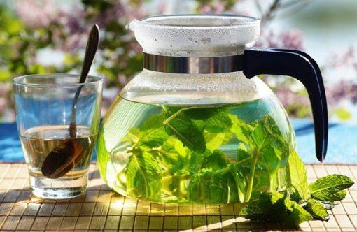 Bạn có thể pha trà từ lá bạc hà tươi