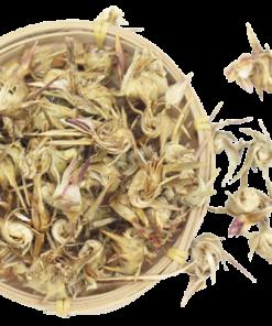Hoa atiso sấy khô bán tại Trà Biếu