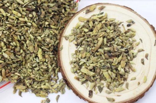 Bạn có thể uống trà pha từ nụ hoa hòe thường xuyên để phòng, hỗ trợ điều trị bệnh trĩ