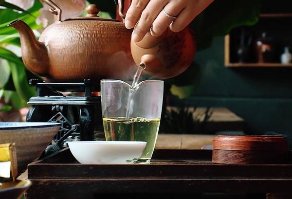 Có thể pha trà xuyên tâm liên như trà xanh thông thường